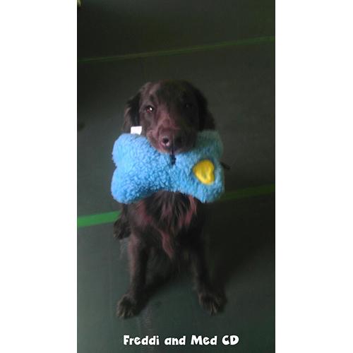 Freddi and Meg CD