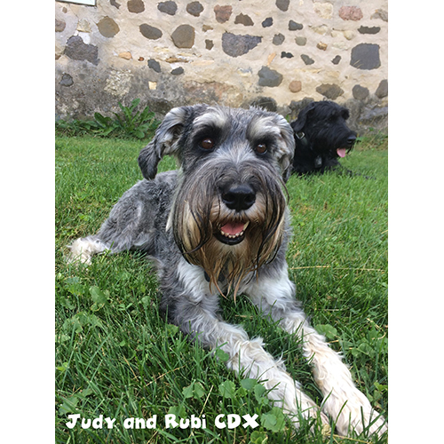 Judy and Ruby CDX