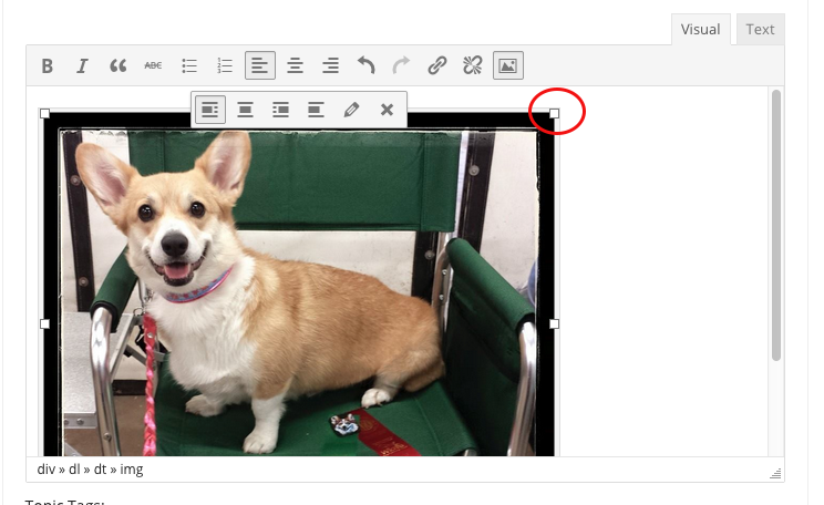 image editing tools in text box